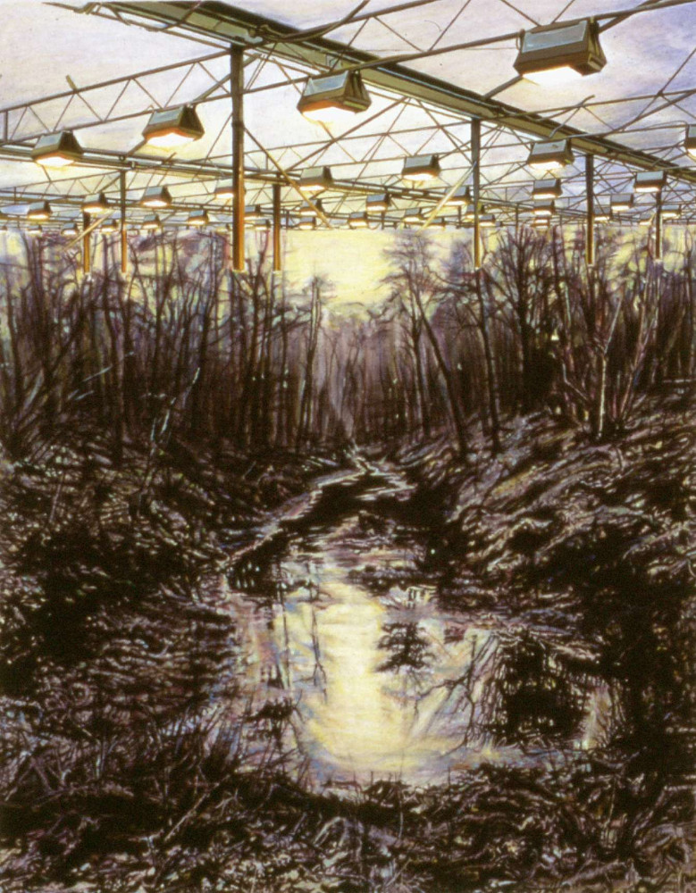 Swamp, 1999,  acrylic and graphite on paper, 47 x 61cm