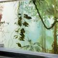 Bunker, 2001,  oil on linen, 185 x 460cm,